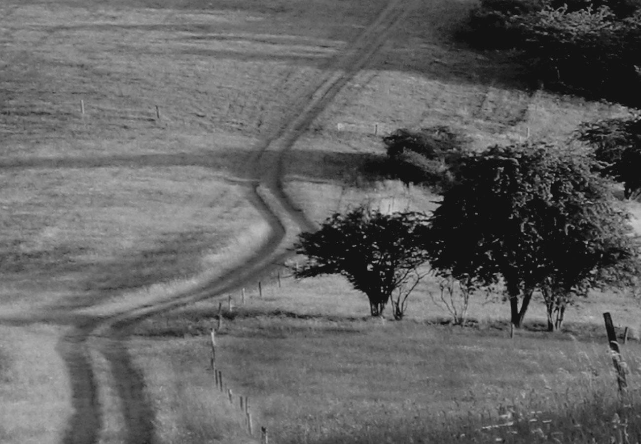 Landschaft - Aufmacherbild Modul Zyklustraining