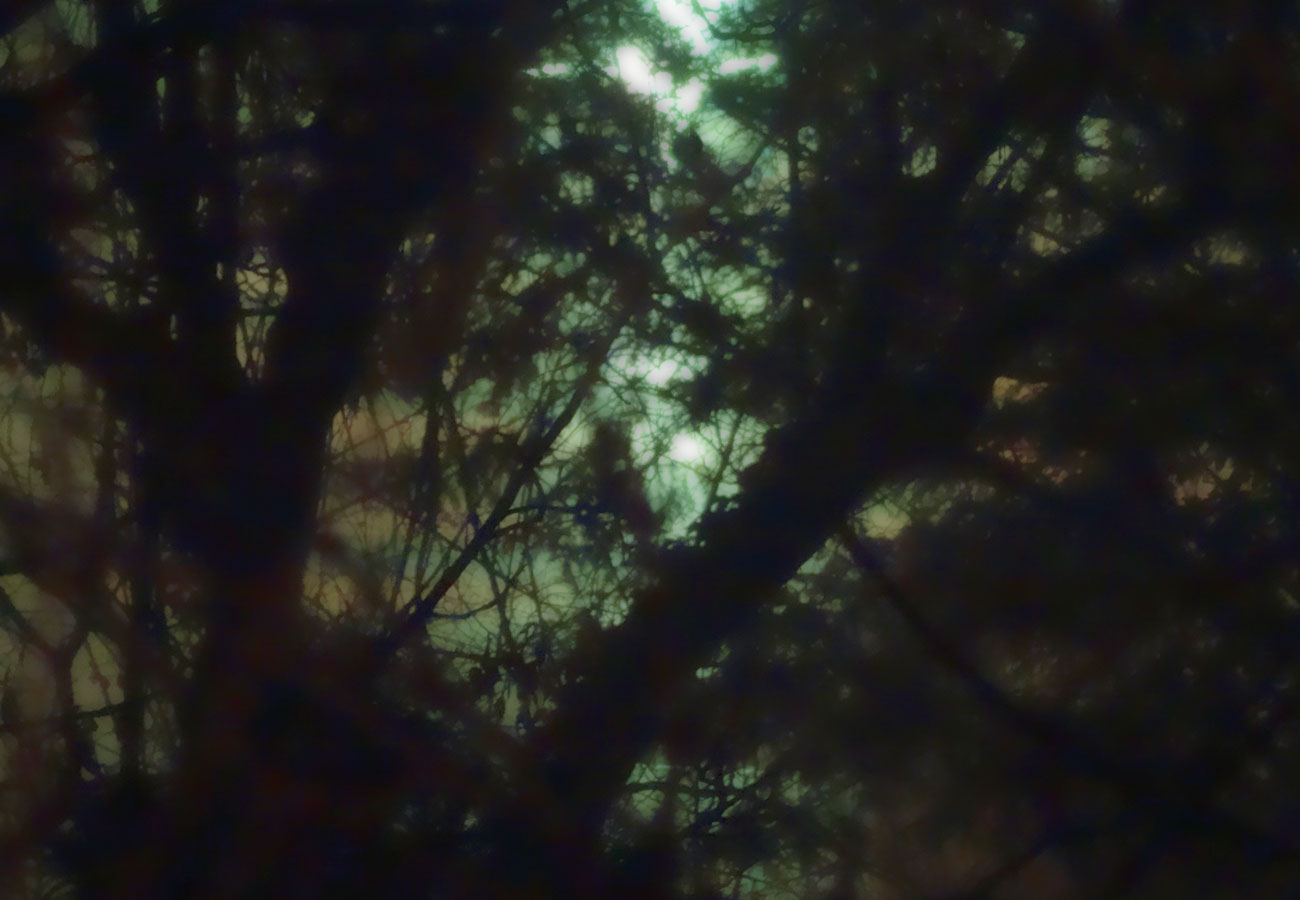Abstraktes Aufmacherbild Mondzeiten-Training